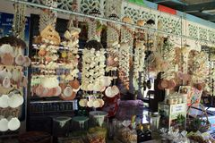 Seashells de suspensão foto de stock royalty free