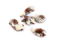 Seashells del chocolate imagenes de archivo