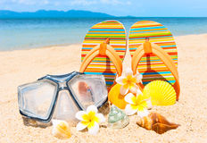 Seashells and diving mask on the sand. Royalty Free Stock Images