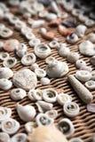 Seashells in einem Korb lizenzfreies stockbild