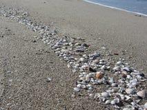 Seashells en la arena Fondo de la playa del verano Visión superior imagen de archivo libre de regalías