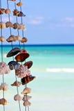 Seashells en una cadena Imagen de archivo libre de regalías