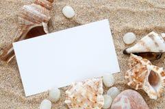 Seashells et sable photos libres de droits