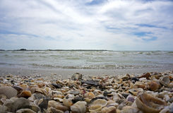 Seashells, fala i chmurny niebieskie niebo, Zdjęcie Royalty Free