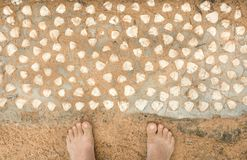 Seashells and feet of tourist on ocean beach. Tropical climate nature background and vacation concept.  royalty free stock image