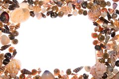 Seashells frame Royalty Free Stock Images