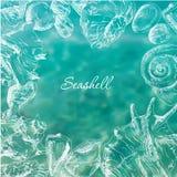 Seashells frame background Stock Image