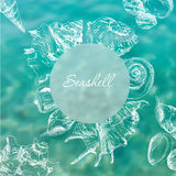 Seashells frame background Stock Photography