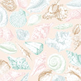 Seashells frame Royalty Free Stock Image