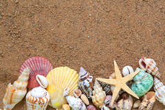 Free Seashells Frame On Sand Royalty Free Stock Image - 5439216