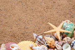 Seashells frame on sand Royalty Free Stock Photography