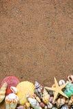 Seashells frame on sand Royalty Free Stock Photo