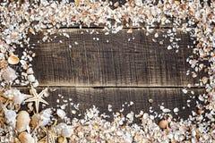 Seashells frame on wood stock photos