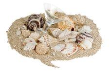 Seashells-Gesprächs-Luftblase Lizenzfreie Stockfotos