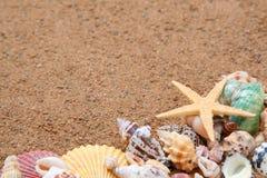Seashells gestalten auf Sand Lizenzfreie Stockfotografie