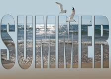 Seashells gestalten auf Sandhintergrund Lizenzfreie Stockfotografie