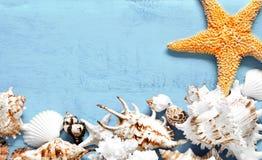 Seashells gestalten auf Sandhintergrund Meeroberteile und Starfish auf einem blauen Hintergrund stockbilder