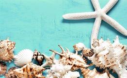 Seashells gestalten auf Sandhintergrund Seeshells auf einem blauen Hintergrund stockbild