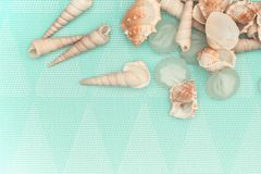 Seashells and glass decor on a light turquoise background stock image