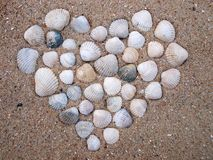 Seashells heart. The shells are in the sand Royalty Free Stock Photo