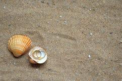 Seashells i obrączki ślubne na piasku zdjęcia royalty free