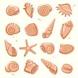 Seashells impostati Vettore illustrazione vettoriale