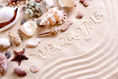 Seashells In Sand With Text Stock Photos