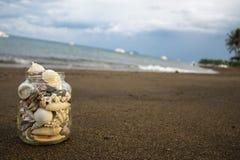 Seashells inkasowi na piasek plaży Eksperymentalny skład z diagonalnym horyzontem zdjęcia stock