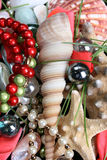 Seashells and jewelery. Variety of seashells and jewelery on red background Royalty Free Stock Photos
