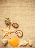 Seashells and linen fabric. Background for summer cards Stock Image