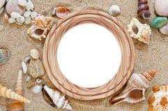 Seashells mit Sand lizenzfreie stockfotos