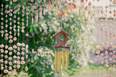 The seashells mobiles curtain with colorful and the green background Royalty Free Stock Photo