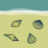 Seashells na areia ilustração stock