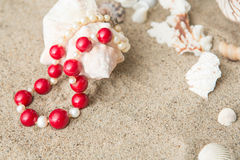 Seashells and  necklace on sand at the beach Royalty Free Stock Photos