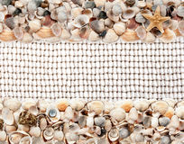 Seashells on the net for fishing Royalty Free Stock Images