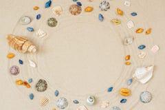 Seashells obramiają na plażowym piaska tle Naturalny seashore textured powierzchnia, odg?rny widok, kopii przestrze? zdjęcie royalty free