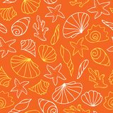 Seashells on orange background. Royalty Free Stock Photos