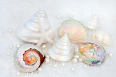 Seashells and Pearls. Seashells and oyster pearls on course sea salt stock photos