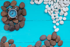 Seashells and pebble with alarm clock on wood background Stock Photography