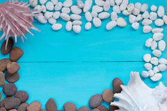 Seashells and pebble on wood background. Royalty Free Stock Image