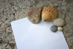 Seashells and pebbles with note paper. Seashells and pebbles with blank note paper Royalty Free Stock Photos