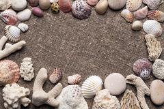 Seashells and pebbles on sacking. White and colored seashells, coral and pebbles on sacking. Top view Stock Images