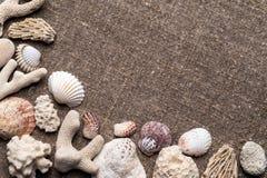 Seashells and pebbles on sacking. White and colored seashells, coral and pebbles on sacking. Top view Royalty Free Stock Photos