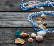 Seashells and pebbles on the wooden table soft focus Royalty Free Stock Photo