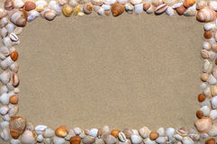 Seashells picture frame Stock Photography
