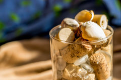 Seashells, rocks and wine caps in the cup royalty free stock image