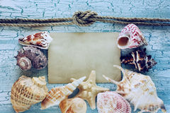 Seashells, rope and blank paper Stock Photos