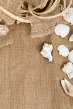 Seashells with rope on brown burlap cloth Stock Image
