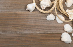 Seashells with rope on brown wooden boards Stock Image