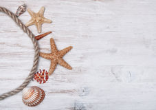 Seashells and rope on the old  shabby wood Royalty Free Stock Photos
